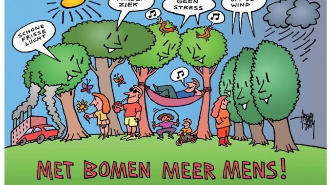 Nieuwe regels voor de bomenkapvergunning in Rotterdam