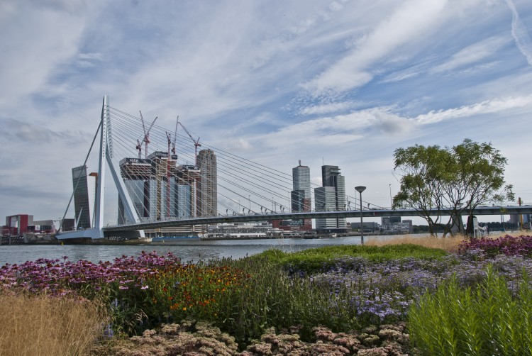 Blauweconferentie over water en de stad