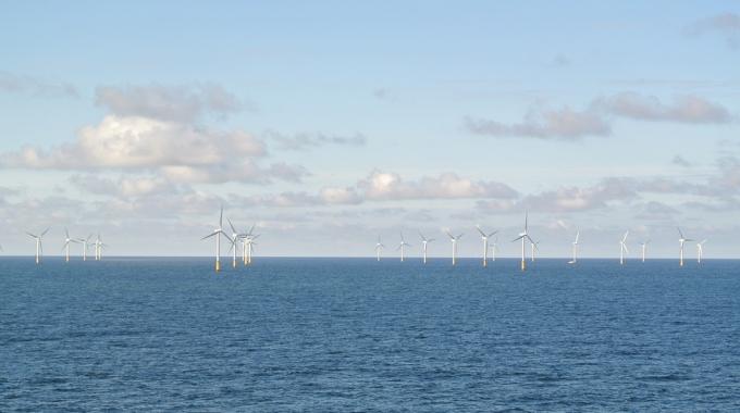 5 milieuorganisaties pleiten voor een duurzame Maasvlakte